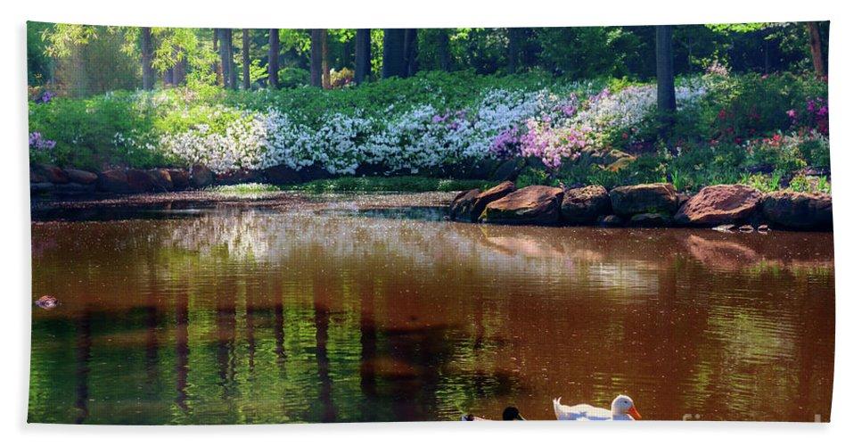 Tamyra Bath Sheet featuring the photograph Three Ducks At The Azalea Pond by Tamyra Ayles