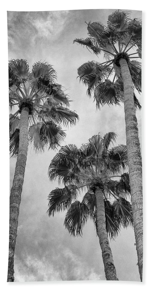 Palm Springs Bath Sheet featuring the photograph Three Palms Bw Palm Springs by William Dey