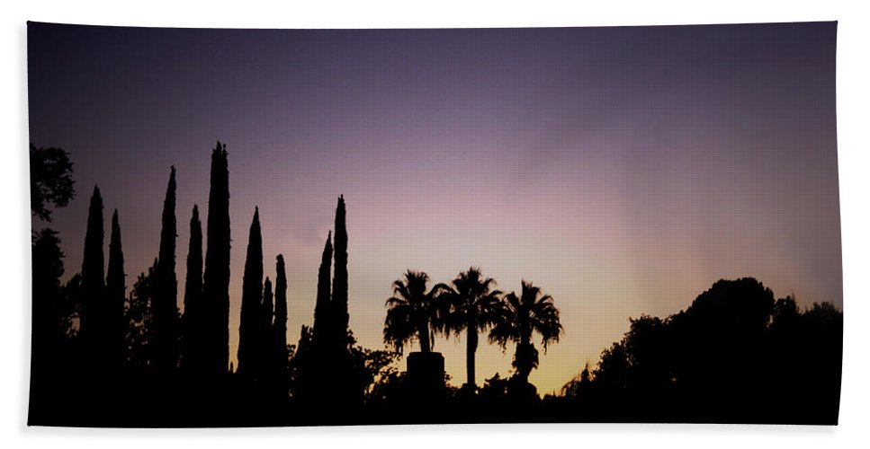 California Hand Towel featuring the photograph Three Palms In California At Sunset by Teresa Mucha
