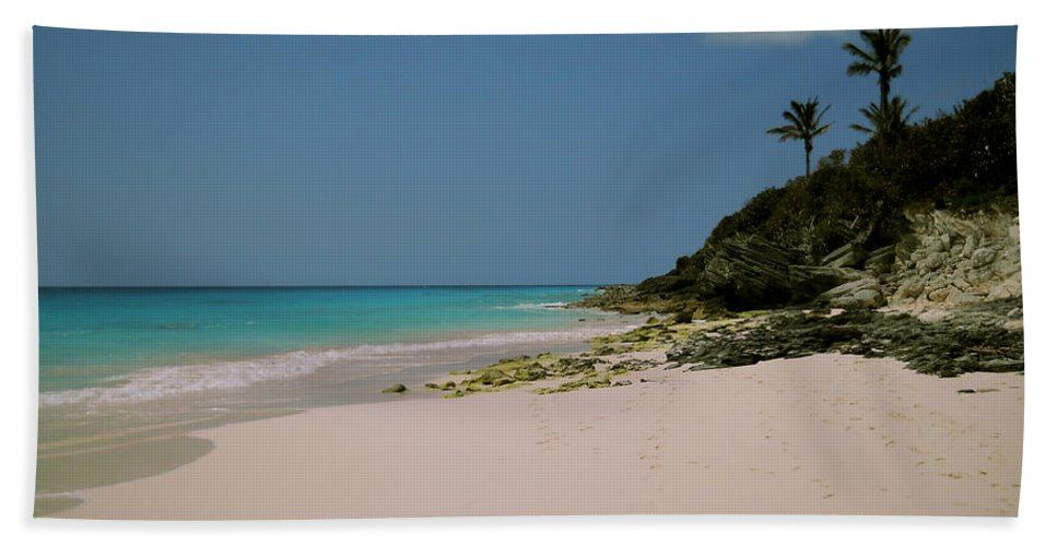 Bermuda Hand Towel featuring the photograph Three Palms by Julia Raddatz