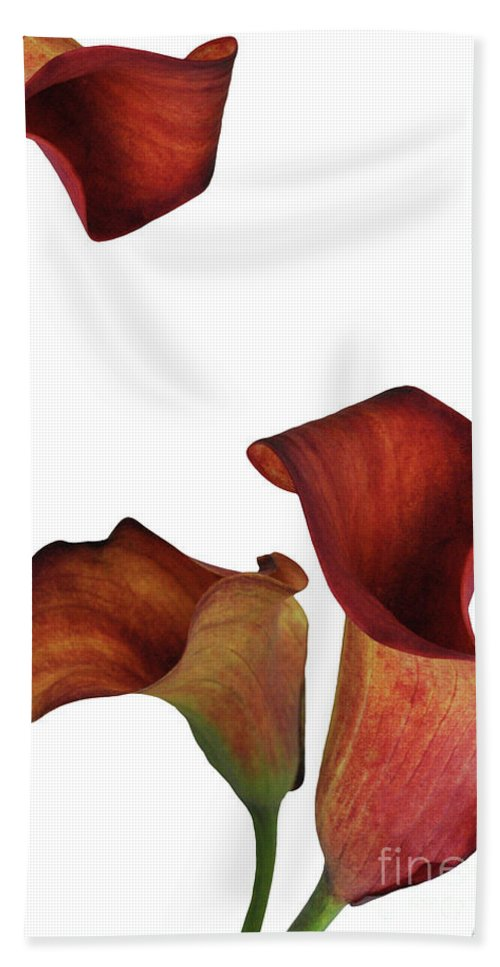 Rust Hand Towel featuring the photograph Three Rust Calla Lilies by Heather Kirk