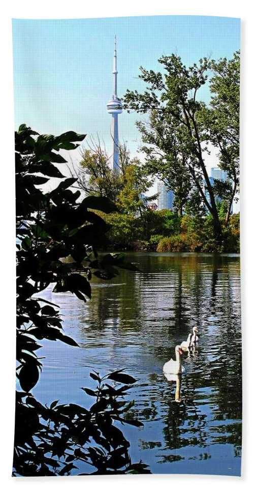 Swans Bath Towel featuring the photograph Three Swans And The Cn Tower by Ian MacDonald