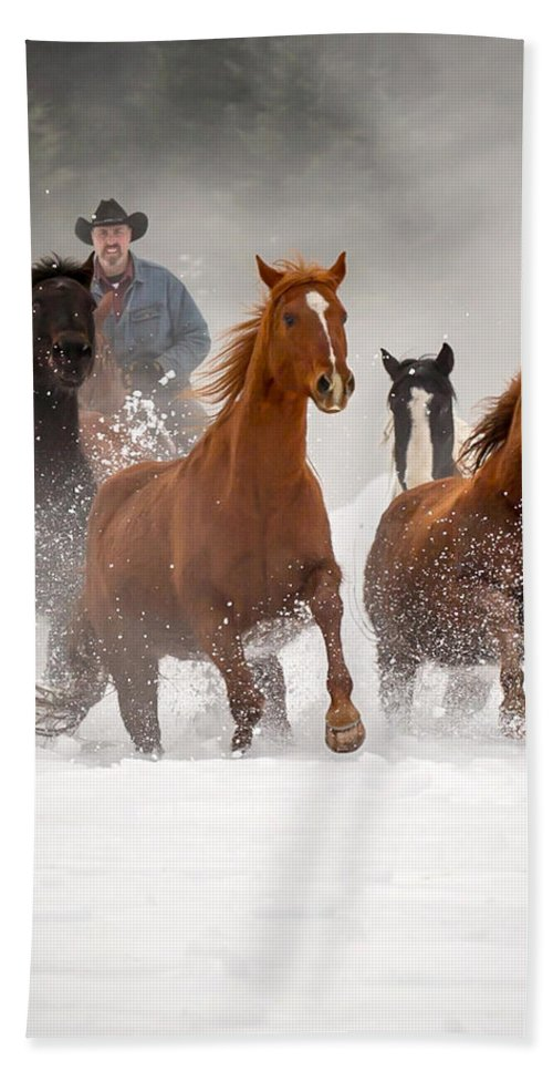 Horses Hand Towel featuring the photograph Through The Snow by Jack Bell