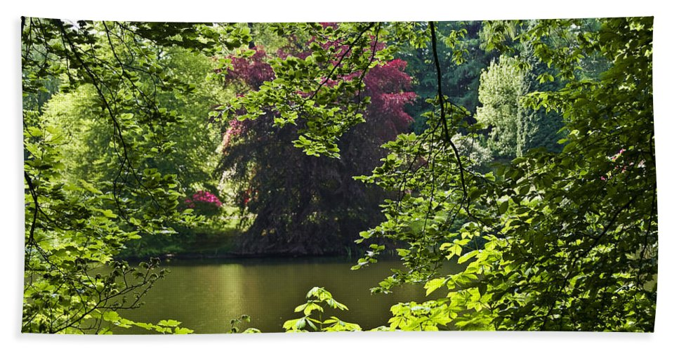 Countryside Bath Sheet featuring the photograph Through The Tree01 by Svetlana Sewell