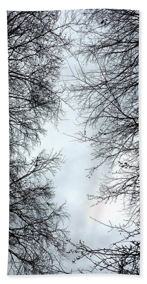 Crow. Bird. Trees. Woods. Woodland. Flying. Bath Sheet featuring the photograph Through The Trees by Nicholas Rainsford