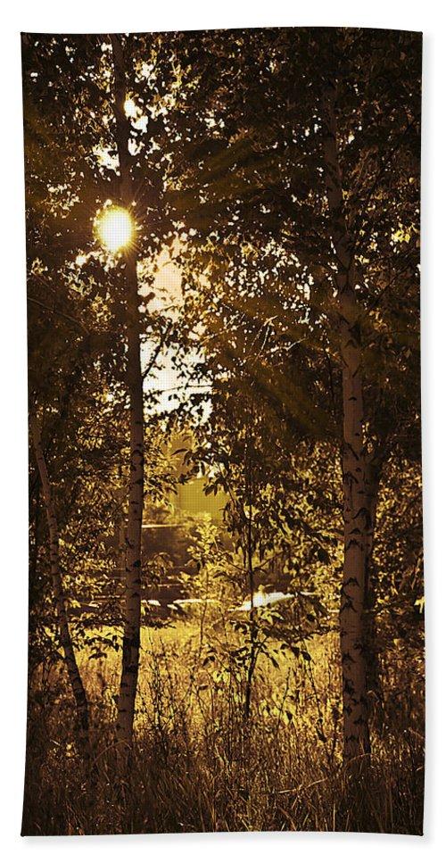 Art Bath Sheet featuring the photograph Through The Trees by Svetlana Sewell