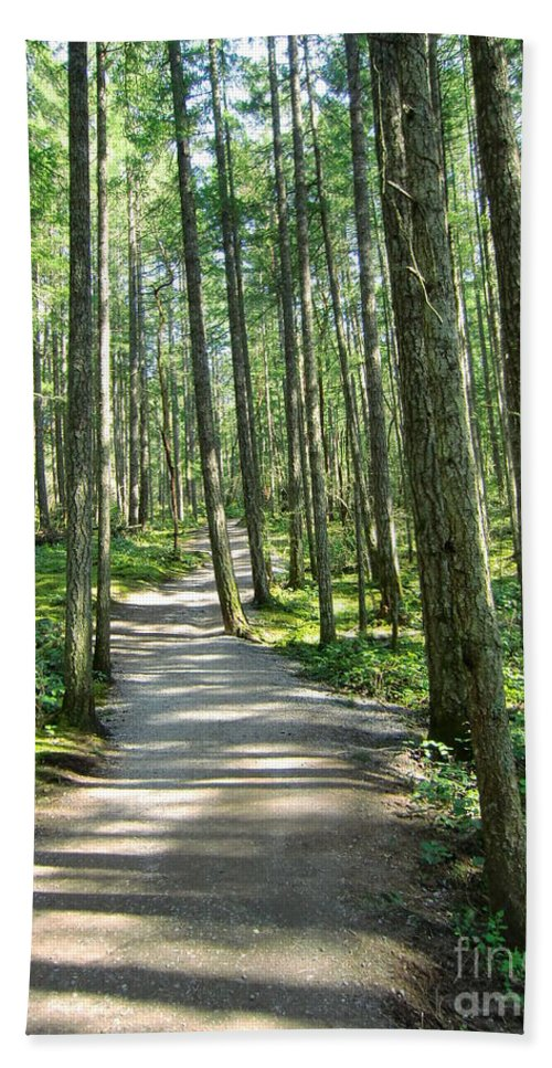 Forest Hand Towel featuring the photograph Through The Woods by Chris Colibaba
