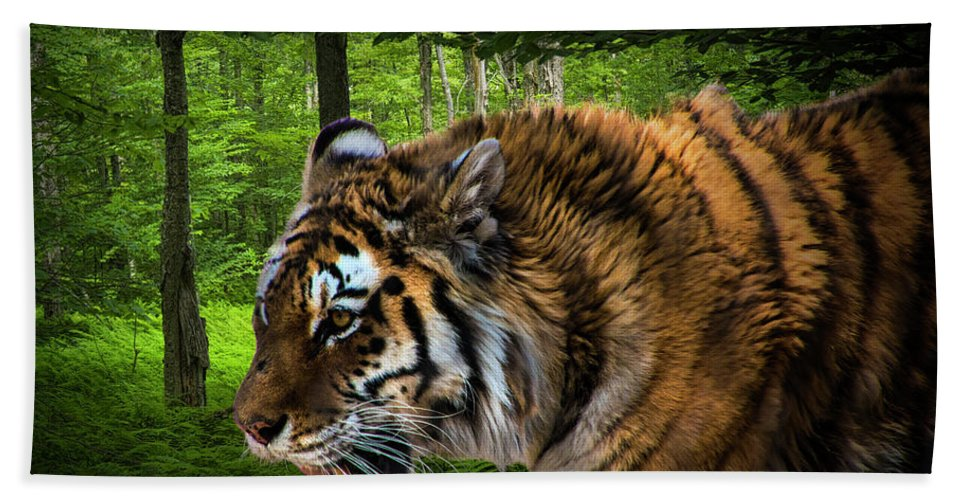 Art Hand Towel featuring the photograph Tiger On The Prowl by Randall Nyhof