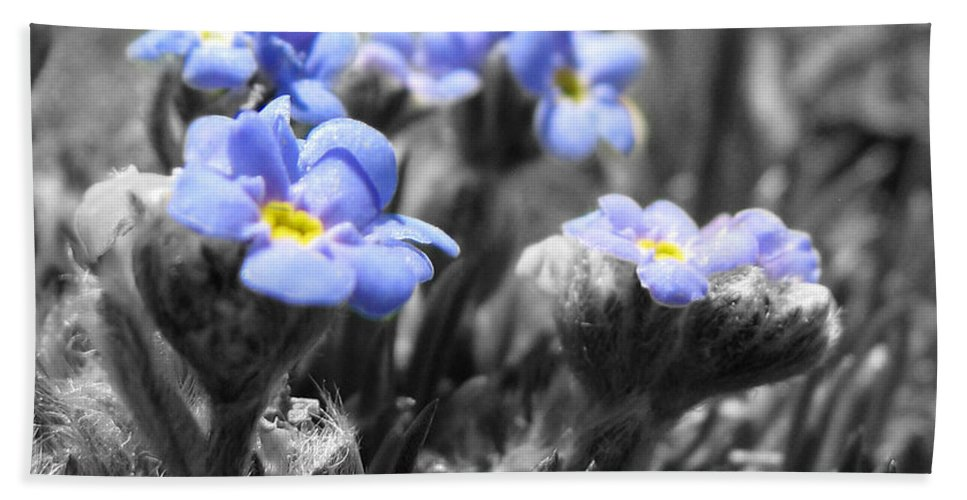 Flowers Bath Towel featuring the photograph Tiny Gems by Amanda Barcon