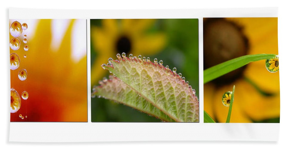 Dew Bath Sheet featuring the photograph Tiny Miracles by Linda Murphy