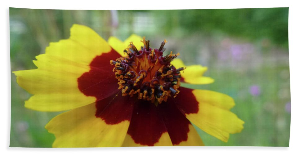 Flower Bath Sheet featuring the photograph Tiny Yellow Flower by Robyn Greaves