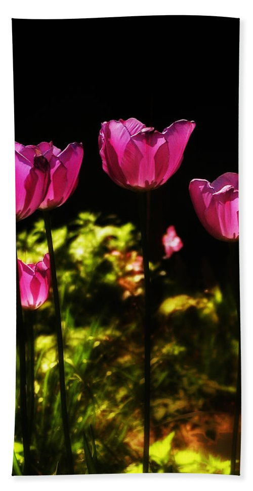 Tulips Hand Towel featuring the photograph Tiptoe Through The Tulips by Bill Cannon