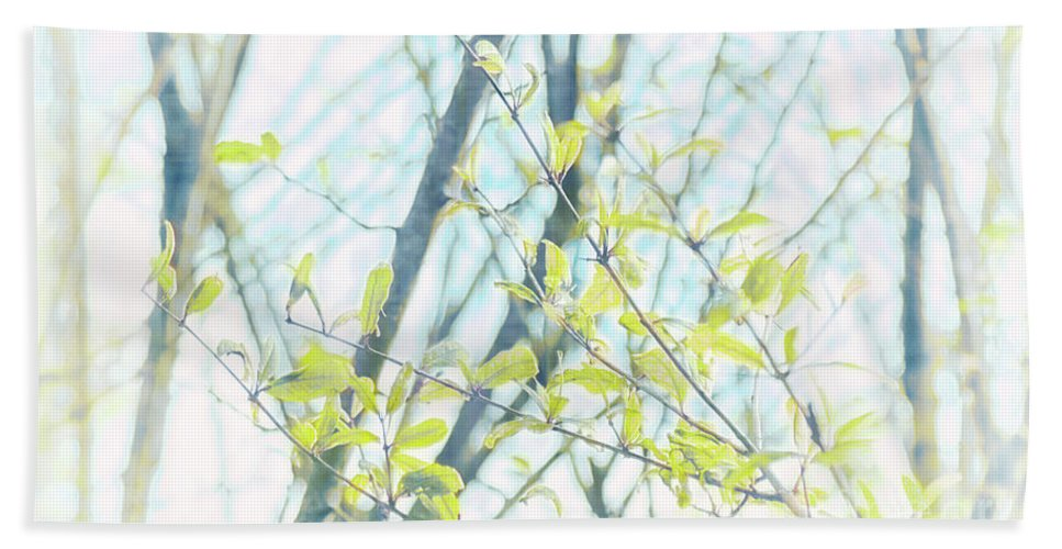 Natural World Bath Sheet featuring the photograph To Be In The Light by Davy Cheng