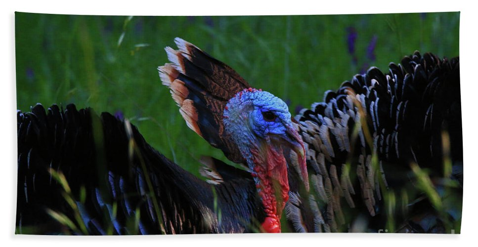 Male Hand Towel featuring the photograph Toms by Craig Corwin