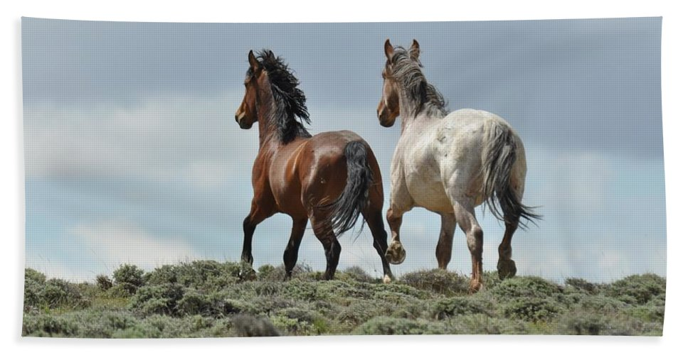 Wild Horses Bath Towel featuring the photograph Too Beautiful by Frank Madia