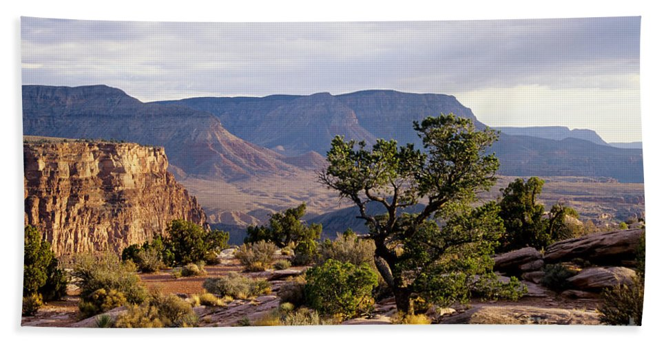 Arizona Hand Towel featuring the photograph Toroweap by Kathy McClure