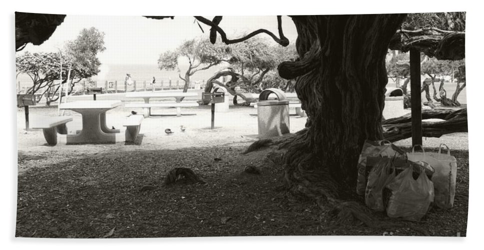 La Jolla Bath Towel featuring the photograph Torrey Pines Baggage Claim by Heather Kirk