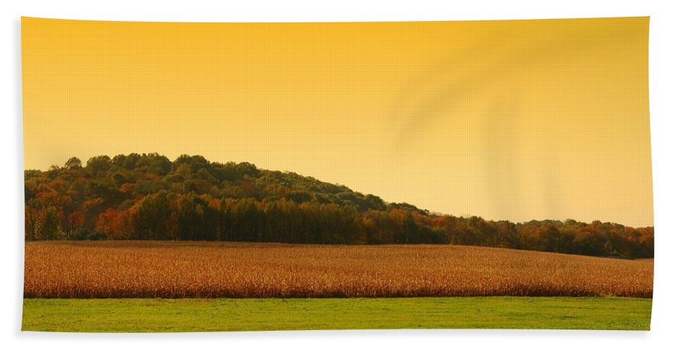 Autumn Landscapes Bath Sheet featuring the photograph Touched By Golden Light - Battlefield Orchards by Angie Tirado