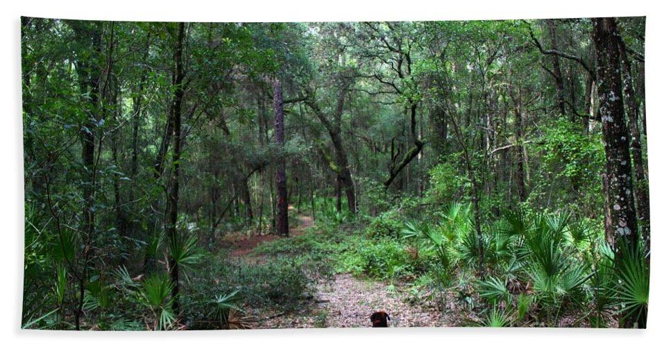 Hiking Bath Sheet featuring the photograph Trail Angel by Barbara Bowen