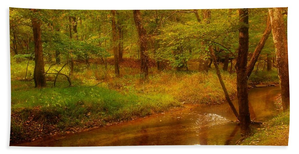 New Jersey Hand Towel featuring the photograph Tranquility Stream - Allaire State Park by Angie Tirado