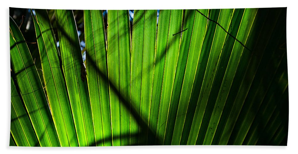 Palmetto Bath Sheet featuring the photograph Translucent Green by Christopher Holmes