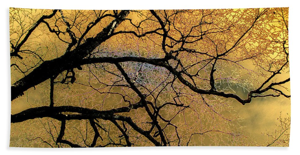Scenic Hand Towel featuring the photograph Tree Fantasy 7 by Lee Santa