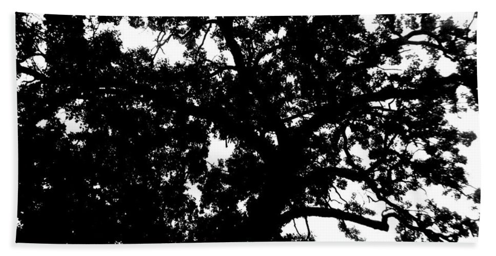 Landscape Bath Sheet featuring the photograph Tree In Black And White by April Patterson