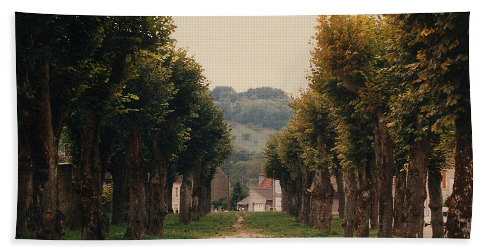 Trees Hand Towel featuring the photograph Tree Lined Pathway In Lyon France by Nancy Mueller