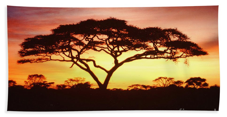 Tree Hand Towel featuring the photograph Tree Of Life Africa by Jerome Stumphauzer