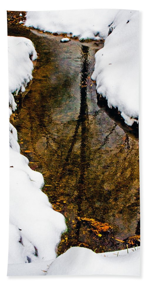Winter Hand Towel featuring the photograph Tree Reflections by David Campbell