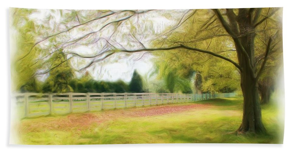 Nature Bath Sheet featuring the photograph Tree Series 1324 by Carlos Diaz