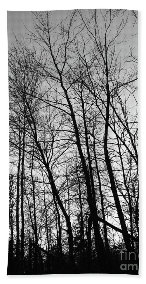 Trees Hand Towel featuring the photograph Tree Silhouette Bw by Stephanie Hanson