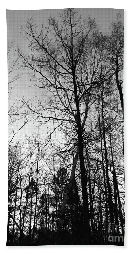 Tree Hand Towel featuring the photograph Tree Silhouette II Bw by Stephanie Hanson