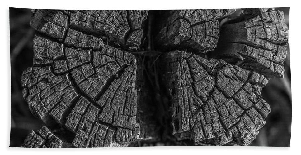 Tree Stump Hand Towel featuring the photograph Tree Stump Black And White by Richard Cheski