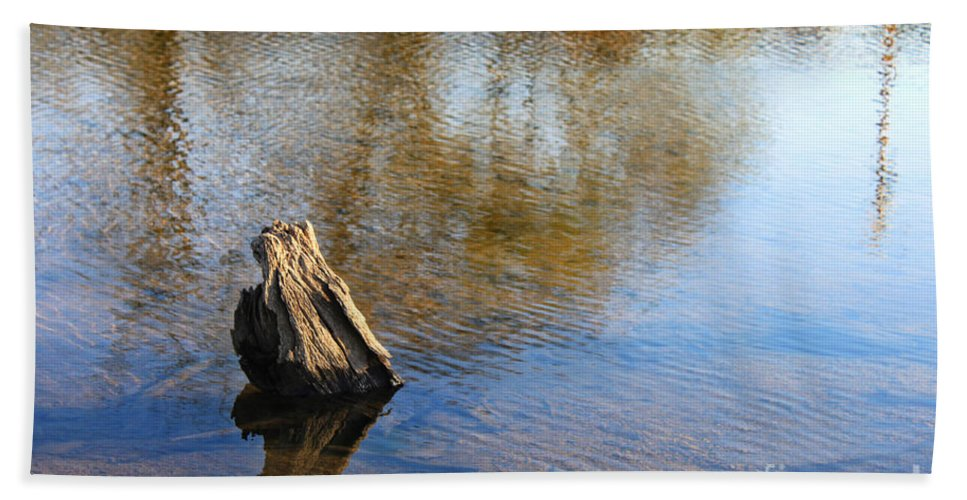 Landscape Bath Sheet featuring the photograph Tree Stump Surrounded By Water by Todd Blanchard