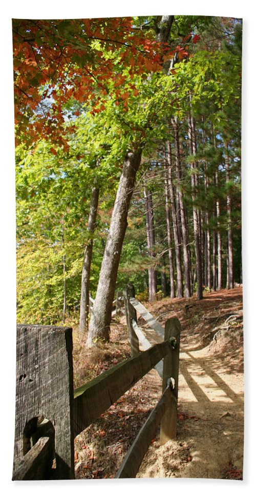 Tree Bath Towel featuring the photograph Tree Trail by Margie Wildblood