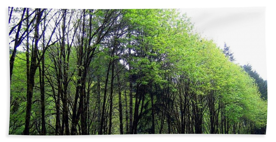 Trees Bath Sheet featuring the photograph Trees Along The Umpqua River 2 by Will Borden