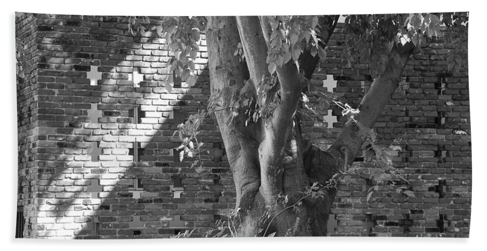 Trees Hand Towel featuring the photograph Trees And Brick Crosses by Rob Hans