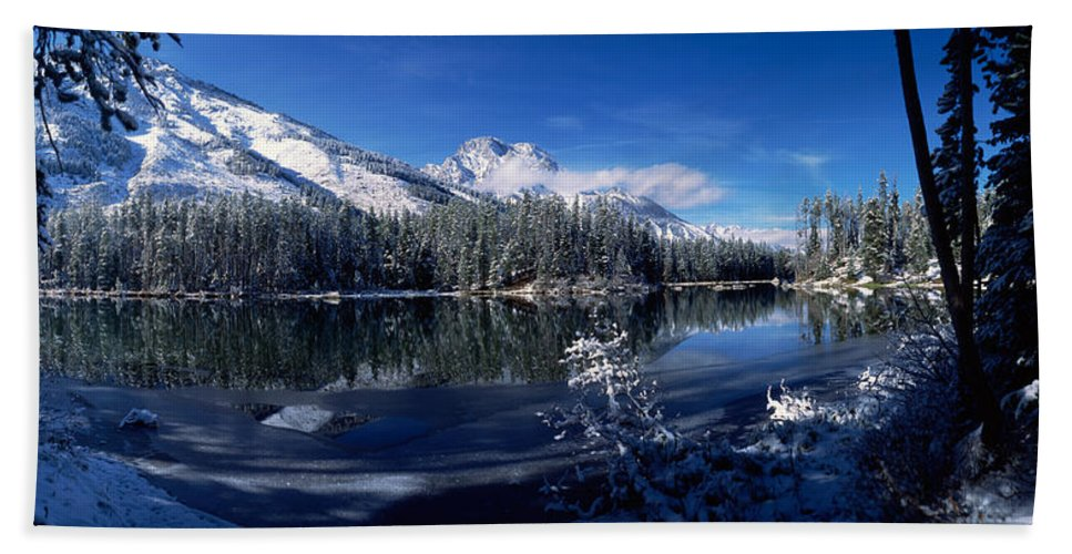 Photography Bath Sheet featuring the photograph Trees At The Lakeside, Yellowstone by Panoramic Images