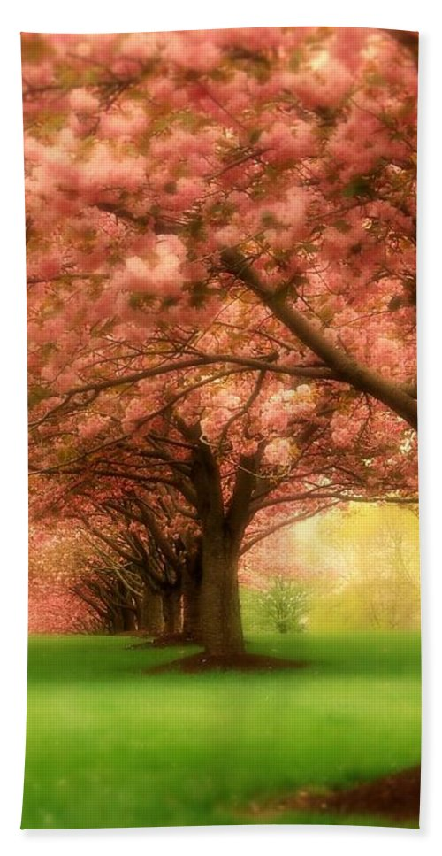 Cherry Blossom Trees Bath Towel featuring the photograph Trees In A Row by Angie Tirado
