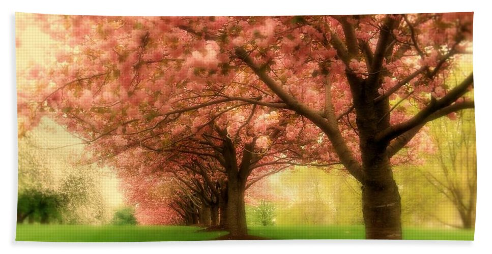 Cherry Blossom Trees Bath Sheet featuring the photograph Trees In A Row by Angie Tirado