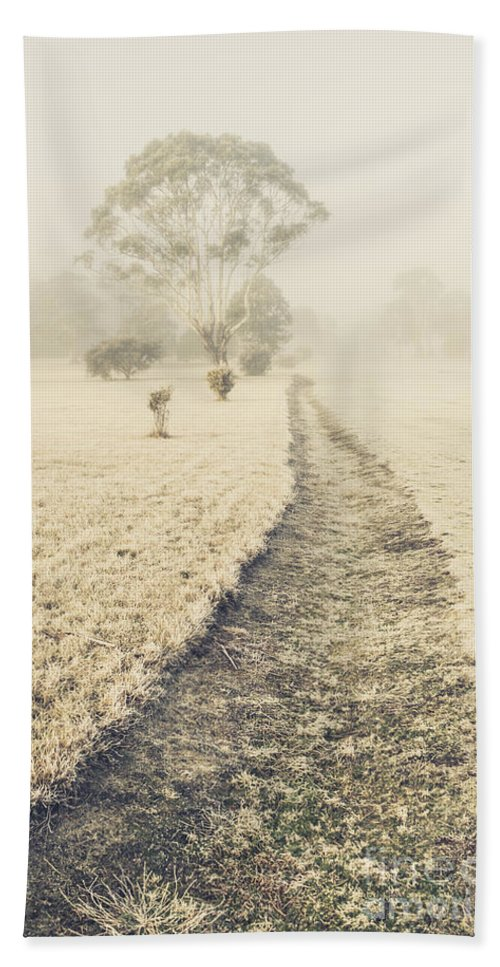 Fog Hand Towel featuring the photograph Trees In Fog And Mist by Jorgo Photography - Wall Art Gallery