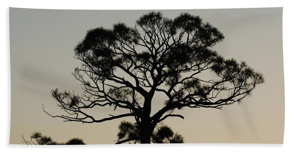 Tree Hand Towel featuring the photograph Trees In Sunset by Rob Hans