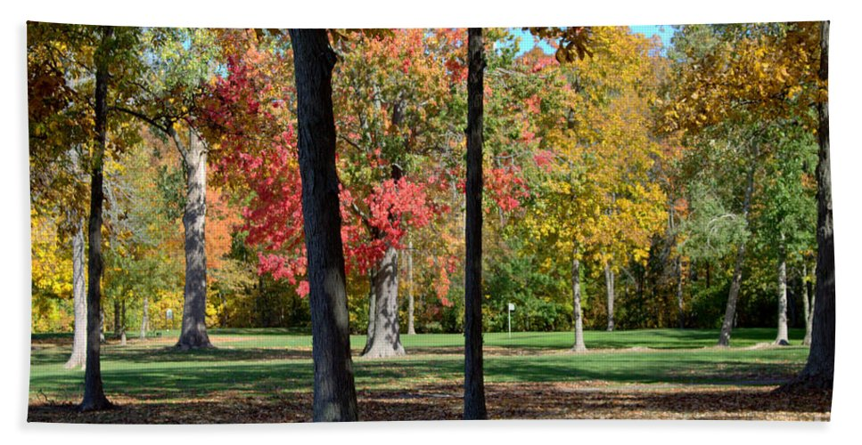 Grand Bend Hand Towel featuring the photograph Tree's In The Forest 2 by John Scatcherd