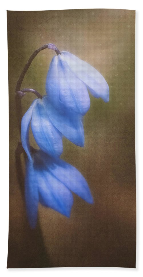 Landscape Bath Towel featuring the photograph Trio Of Spring Flowers by Scott Norris