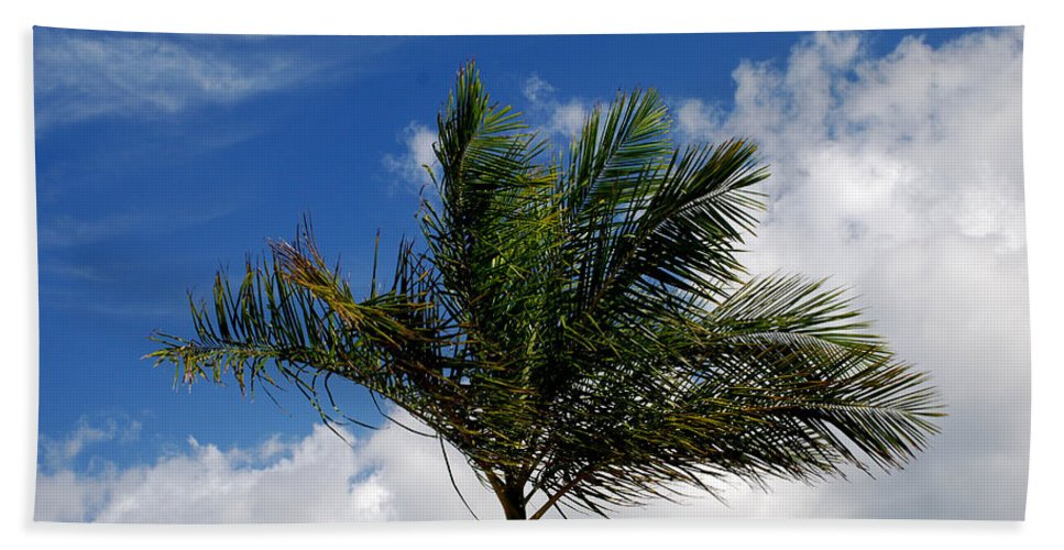 Palm Tree Hand Towel featuring the photograph Tropical Breeze by Gary Wonning