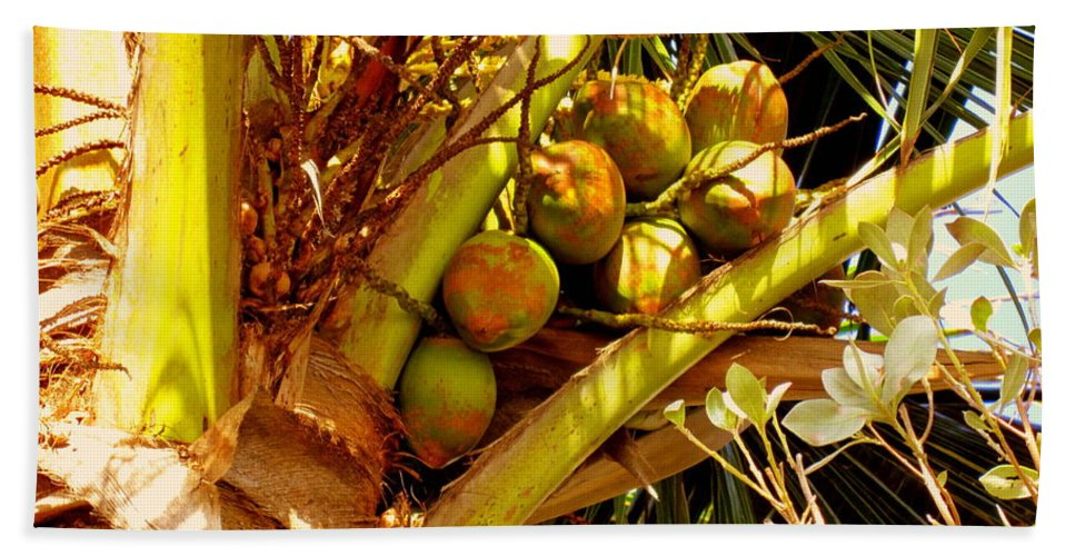 Coconuts Bath Sheet featuring the photograph Tropical Dreams 1 by Susanne Van Hulst