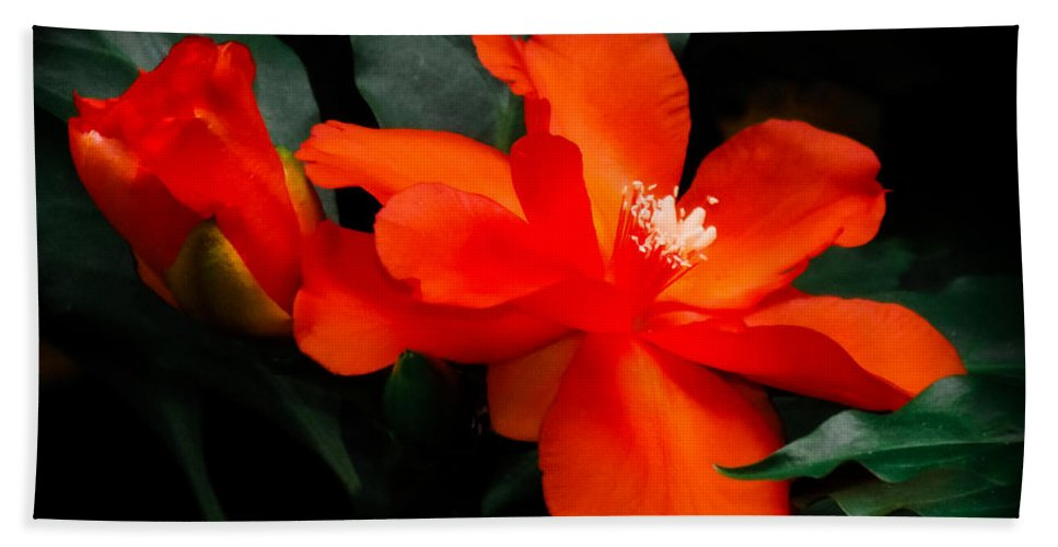 Orange Tropical Flowers Bath Sheet featuring the photograph Tropical Elegance by Karen Wiles