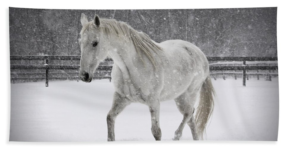 Horse Hand Towel featuring the photograph Trot In The Snow by Tina Meador