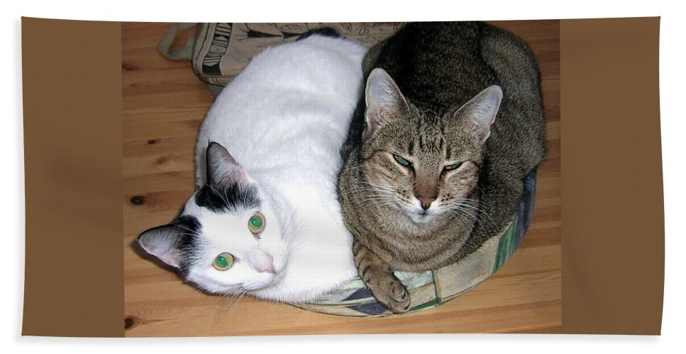 Cat Bath Towel featuring the photograph True Love by Valerie Ornstein